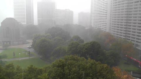 Heavy Rain in Sydney Hyde Park 01 Anzac Memorial Stock Video Footage