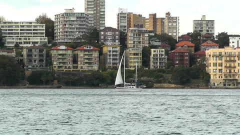 North Sydney view 06 sailboat Footage