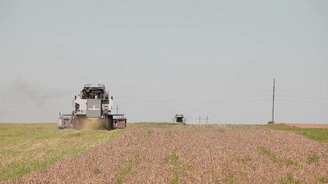 Harvesters harvest Footage