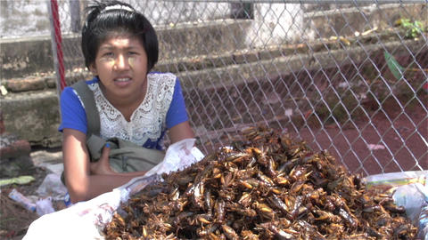 Yangon, stall with fried grasshoppers Footage