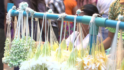 Yangon, offering flowers Live Action