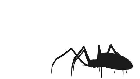 Creepy spider walk and other animations design element for scary happy Halloween Animation