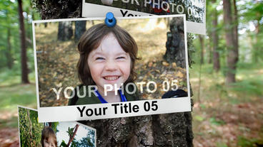 PHOTOS ON TREE TRUNK After Effects Project