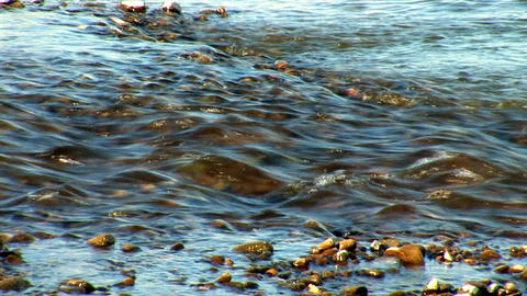 river prut 16 Stock Video Footage