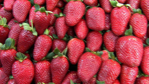 strawberry 1 Stock Video Footage