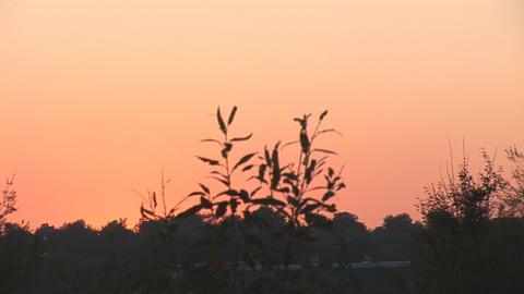 sunset bg 1 Stock Video Footage