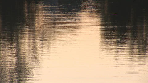 water bg 1 Stock Video Footage