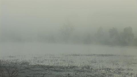 mist 2 Stock Video Footage
