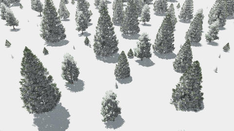 Flight over winter fir forest at snowfall day Animation
