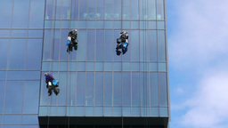 Three window cleaners at work Footage