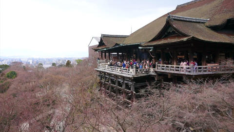 KYOTO, JAPAN - MARCH 2015: tourists visit Kiyomizu dera temple. Japanese world h Footage