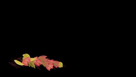Lower Third-autumn leaves CG動画素材