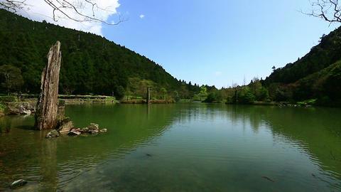 SNY50314P03- 2291 宜蘭明池 Mingchih Forest Recreation Area Live影片