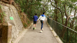 Walking up the hill pathway, following two boys Footage