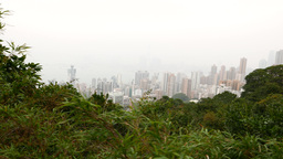 Nice city view from the foresty top of the mountain Stock Video Footage