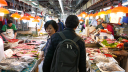 Fresh seafood and fish market, walking into Footage