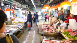 Fresh seafood and fish market, walking into Stock Video Footage