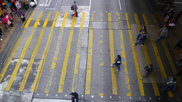 Pedestrian crossing from the top, crowd of people walking Stock Video Footage