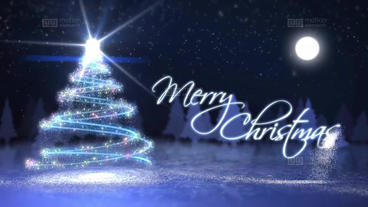 Christmas Card stock footage