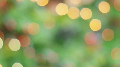 Colorful bokeh of Christmas lights tree. Static Stock Video Footage