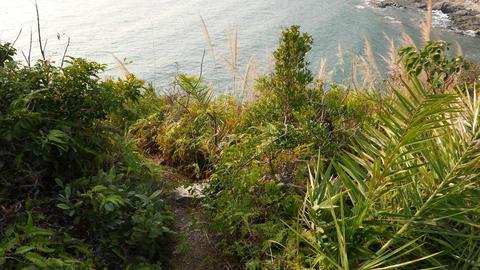 Climb down trodden footpath on green island hillside, POV shot Footage