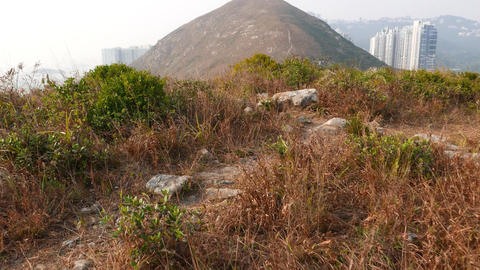 POV walk at hill of small island, dried bush tangle,... Stock Video Footage