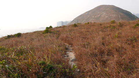 Trodden path lie over dry grass on top of island, small uninhabited Ap Lei Pai Footage