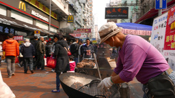 Chestnut cooking on the street. Nut explosion to camera Stock Video Footage