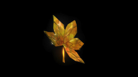 Autumn Spinning Leaf Changing Colour, 13 seconds Stock Video Footage