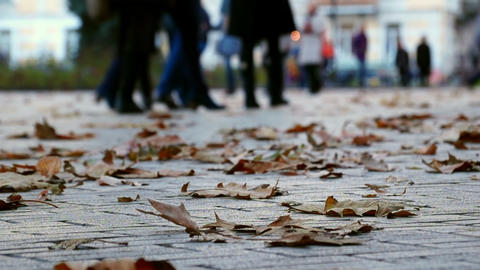 Autumn. People Walking Stock Video Footage
