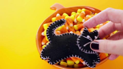 Halloween treats Footage