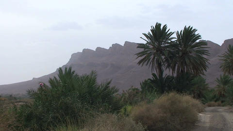 Mountains at Draa valley Footage