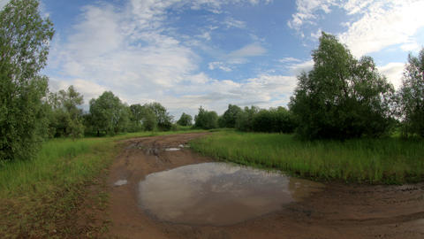 In the forest after the rain clouds reflected in a puddle. Lubinsky District, Om Footage