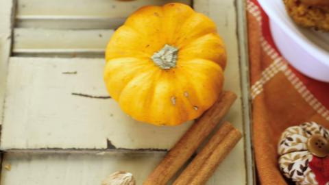 Pumpkin butter Live Action