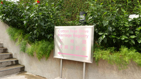 Cotton Tree Marriage Signboard With Pink Text On Stainless Surface stock footage