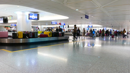 Luggage reclaim hall. Transporter with colorful cases, boy takes his bag Footage