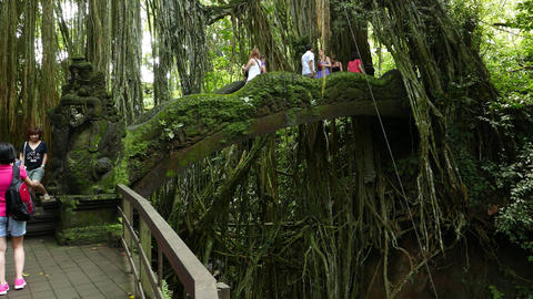 People Walk On Mossy Stone Bridge Decorated By Dragon Sculpture, Tropical Forest stock footage