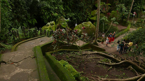 Tourist group downwards, ancient rocky park in rainforest Footage