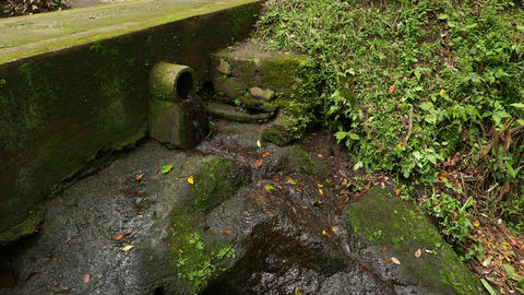 Wet mossy stone under small runnel stream, fall down from pipe outlet Footage