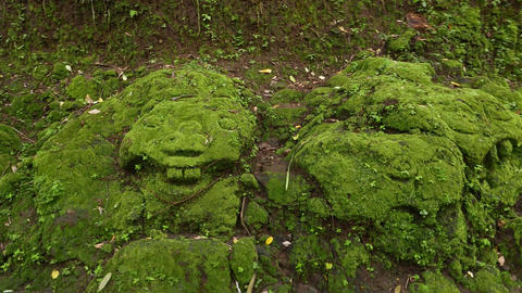 Scary stone bas-relief on mossy rock, close up parallax shot Footage