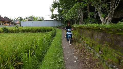 Ricefield Side Path, Move Along, Scooter Ride Towards, Rural Area stock footage