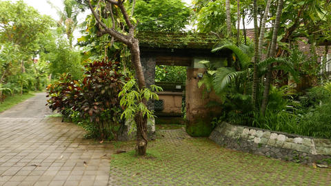Green mossy stony gate, yard entrance, tropical plants and greenery Footage