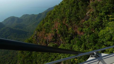 Deep green rainforest on mountainside, parallax shot from Sky Bridge Footage