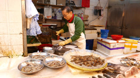 Variety of seafood products on market stall, close view Footage