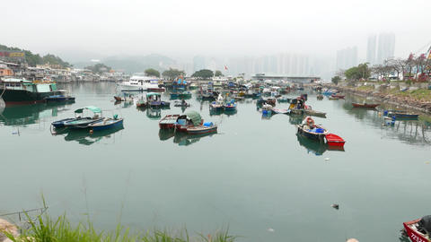 Boats diversity on typhoon shelter in Lei Yue Mun. Panoramic shot, moving camera Footage