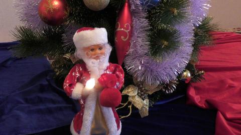 Santa Claus at Christmas trees Footage