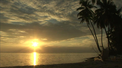 Tropical beach at dawn Stock Video Footage