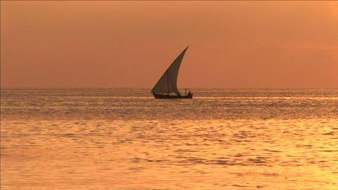 Sunset beach Stock Video Footage