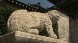 Gyeongbokgung Palace Footage