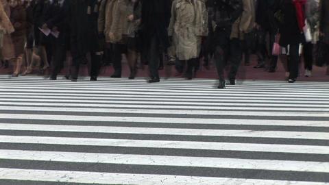 Urban commuter, Live Action